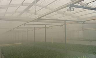 industries_greenhouse